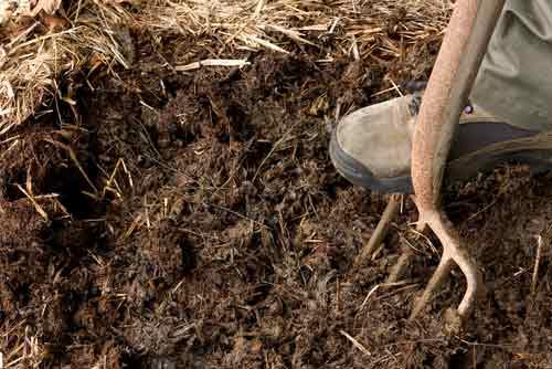Fumier conditionne aussi la texture du mélange de terre en allégeant la terre
