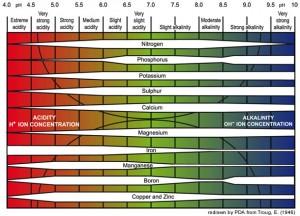 Le rapport entre le pH de la terre et la disponibilité relative des nutritifs de plantes. Plus épaisse est la barre, plus il y a de disponibilité.