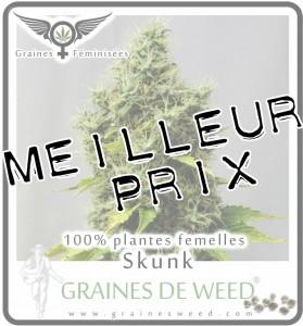 Achter le graines de cannabis au meilleur prix!